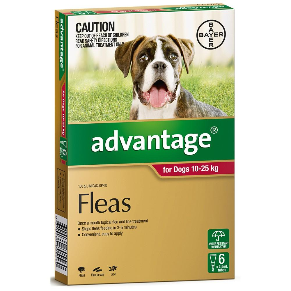 Advantage For Dogs 10-25Kg Red 6 Pack