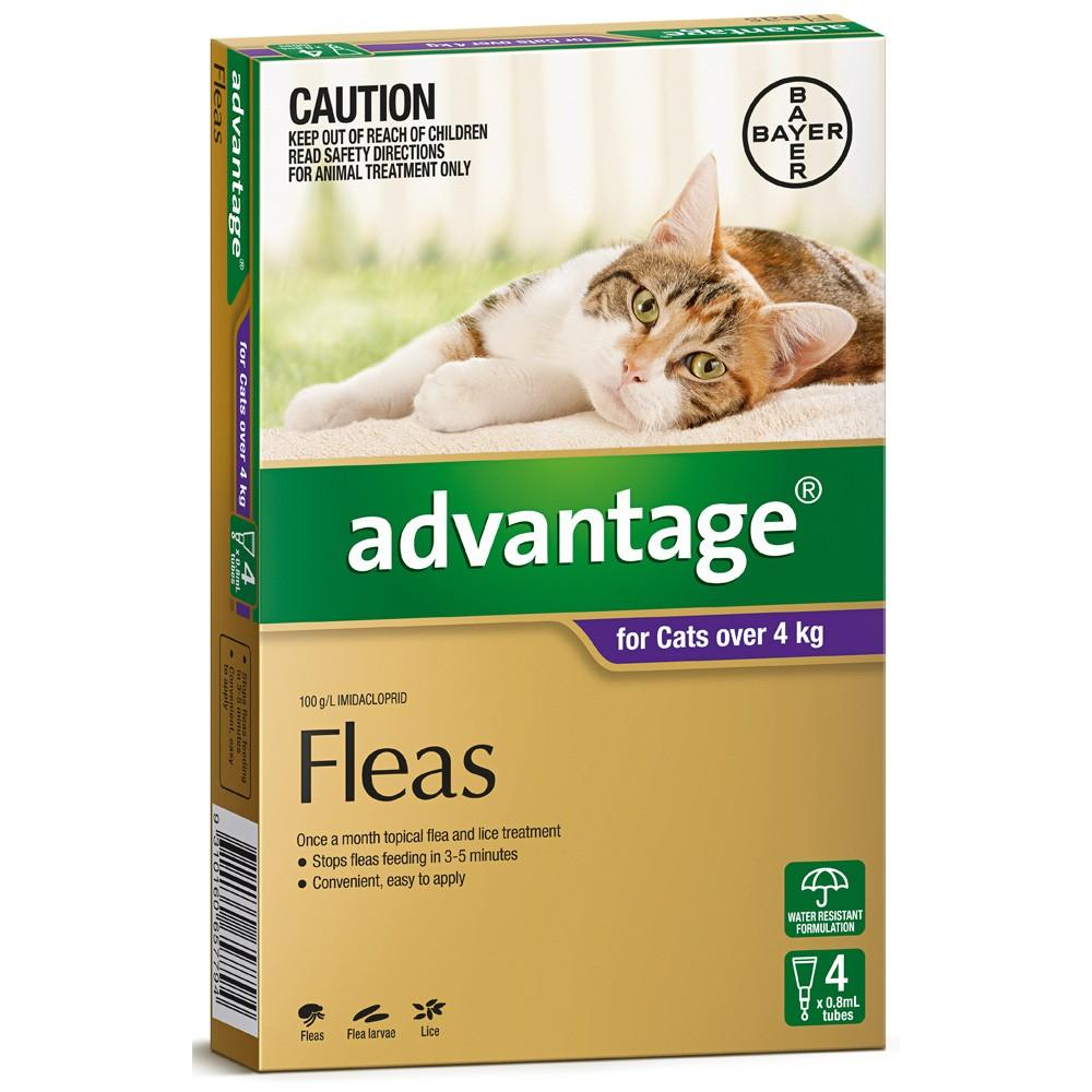 Advantage For Cats Over 4Kg Purple 4 Pack