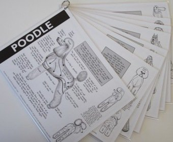 Poodle Grooming Chart