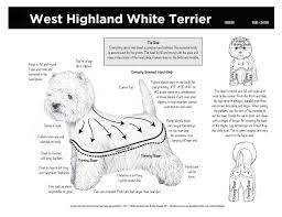 WEST HIGHLAND TERRIER GROOMING CHART