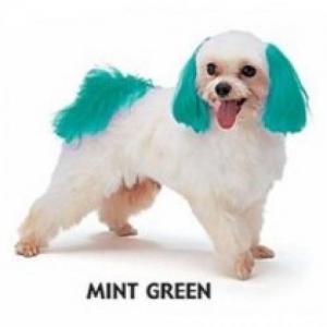 Dyex Dog Dye - Mint Green 150g