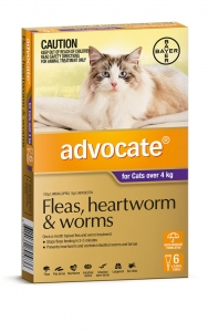Advocate For Cats Over 4Kg Purple 6 Pack