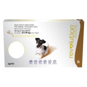 Revolution For Dogs 5.1-10Kg Brown 6 Pack