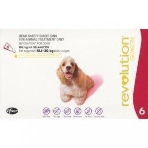 Revolution For Dogs 10.1-20Kg Red 6 Pack