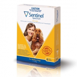 Sentinel Spectrum Chews For Dogs 12-22Kg Yellow 6 Pack