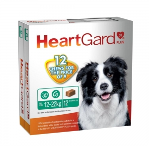 Heartgard Plus Chews For Dogs 12-22Kg Green 6 Pack