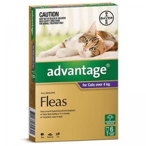 Advantage For Cats Over 4kg Purple 6 pack