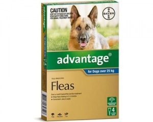 Advantage For Dogs Over 25KG Blue 4 Pack
