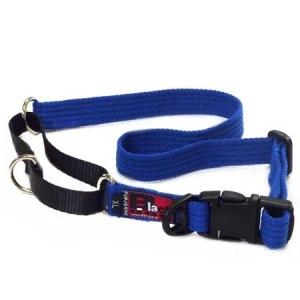 Black Dog Training Collar - Extra Large
