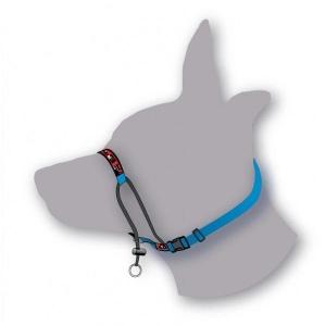 Black Dog Training Halter (mini) - All colours