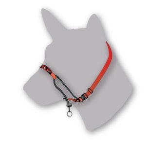 Black DogTraining Halter (small) - All colours
