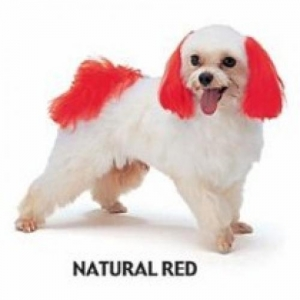 Dyex - Natural Red 50g