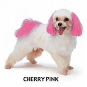 Dyex - Cherry Pink 50g