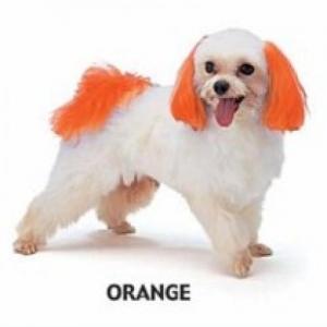 Dyex - Orange 50g