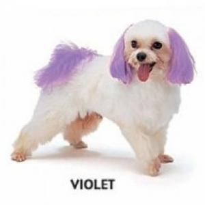 Dyex - Violet 50g