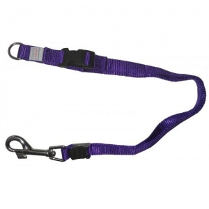 "Groomers Helper Noose 5/8"" - PURPLE"